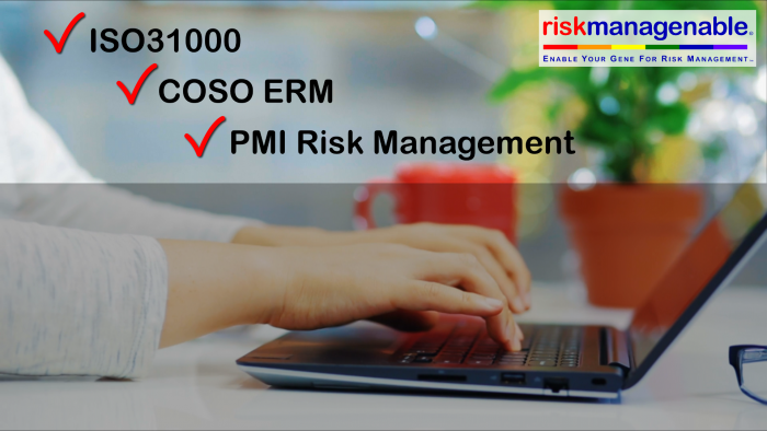 Risk Template Software in Excel for ISO31000, COSO ERM, PMI Risk Management, etc.