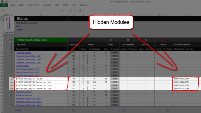 Risk Template in Excel - Hidden Modules