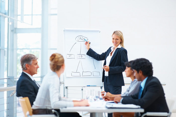 Woman training a group of risk professionals